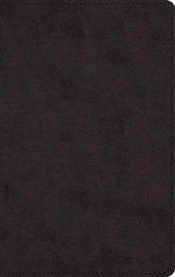Picture of ESV Men's Devotional Bible (Trutone, Black)