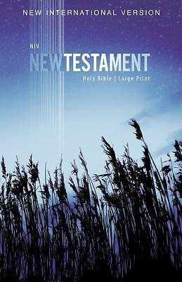 Picture of NIV, Outreach New Testament, Large Print, Paperback