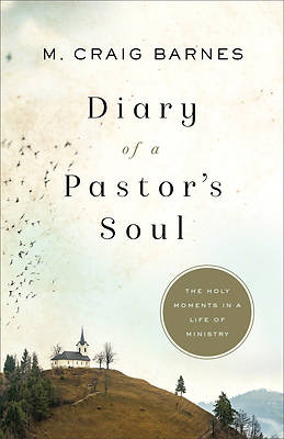 Diary of a Pastor's Soul
