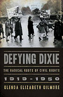 Picture of Defying Dixie