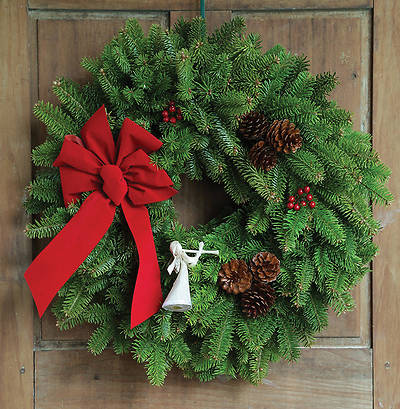 Fresh-Cut Angel Song Wreath 22""