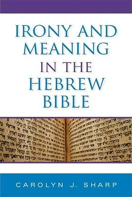 Picture of Irony and Meaning in the Hebrew Bible