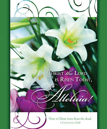 Christ the Lord is Risen Today Bulletin, Large (Package of 100)