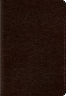 Pocket New Testament with Psalms and Proverbs-ESV