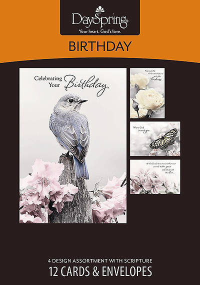 Picture of A Touch of Color - Birthday Boxed Cards - Box of 12