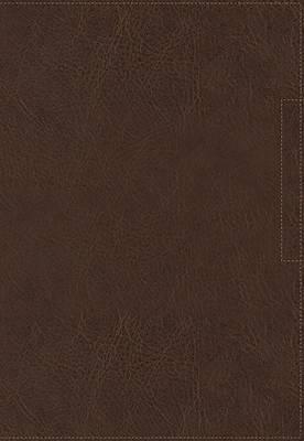 Picture of NVI Santa Biblia, Lucado, Palabra de Aliento, Leathersoft, Café, Interior a DOS Colores