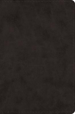 Picture of ESV Single Column Legacy Bible (Trutone, Black)
