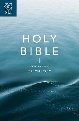 Picture of Text Bible-NLT-Economy