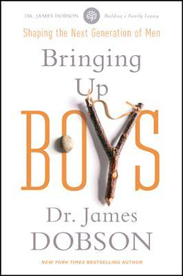 Picture of Bringing Up Boys - eBook [ePub]