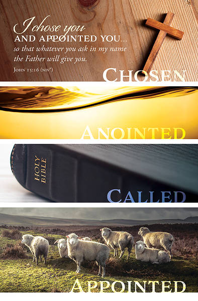 Picture of I Chose You Ordination Regular Size Bulletin