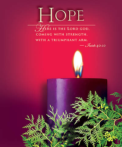 Advent Sunday 1 Hope Bulletin 2014, Large (Package of 50)