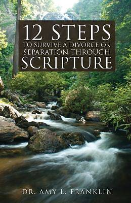 Picture of 12 Steps to Survive a Divorce or Separation Through Scripture