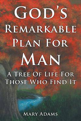 Picture of God's Remarkable Plan for Man