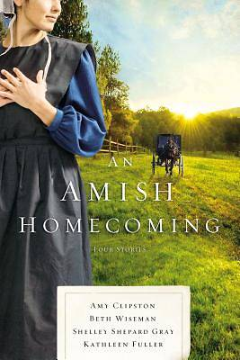 Picture of An Amish Homecoming