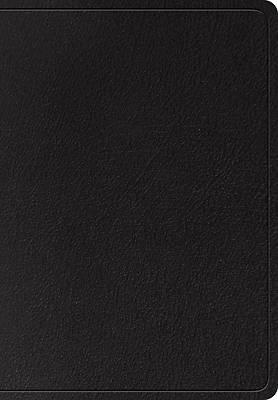 Picture of ESV Super Giant Print Bible (Black)