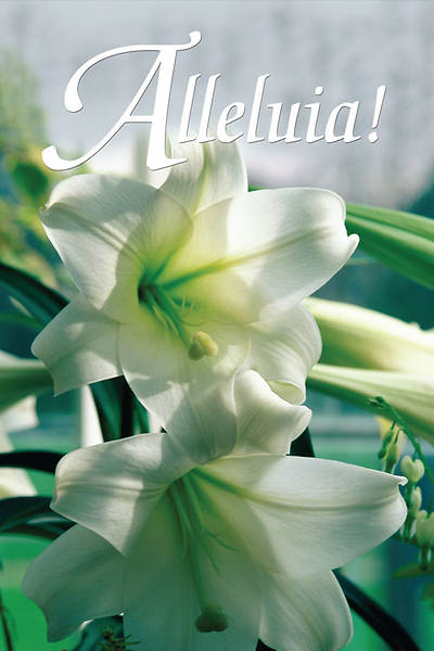 Easter Sunday Alleluia Creation Banner 4X6