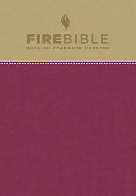 Picture of Fire Bible