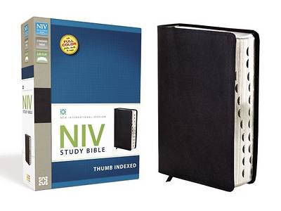New International Version Study Bible