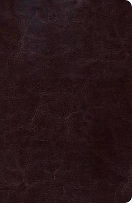Picture of Biblia de Estudio Scofield Tomano Personal-Rvr 1960
