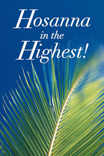 Easter Sunday Hosanna in the Highest Creation Banner 4X6