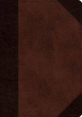 ESV Single Column Journaling Bible, Large Print (Trutone, Brown/Walnut, Portfolio Design)