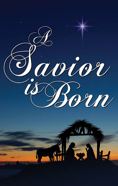 Nativity Series Savior Is Born Banner 3 x 5