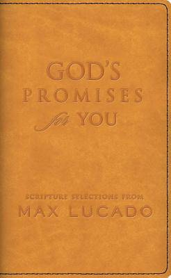 Picture of God's Promises for You
