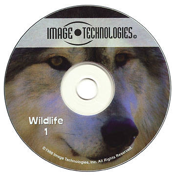 Image Technologies - Wildlife 1