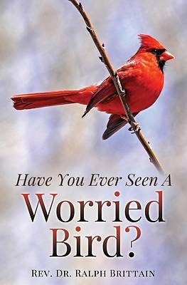 Picture of Have You Ever Seen A Worried Bird?