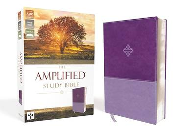 Picture of Amplified Study Bible, Imitation Leather, Purple