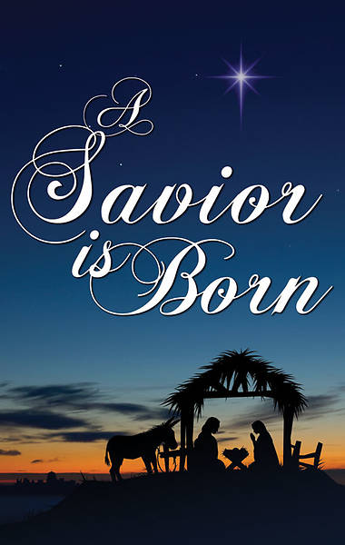 Nativity Series Savior is Born Banner 4 x 6