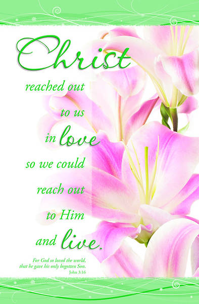 Christ/John 3:16 Easter Bulletin (Stargazer Lily), Regular (Package of 100)