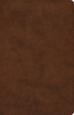 ESV Prayer Bible (Trutone, Brown)