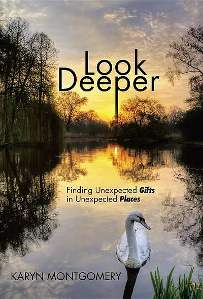 Picture of Look Deeper