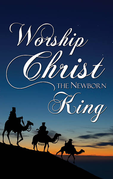 Nativity Series Worship the King Banner 4 x 6