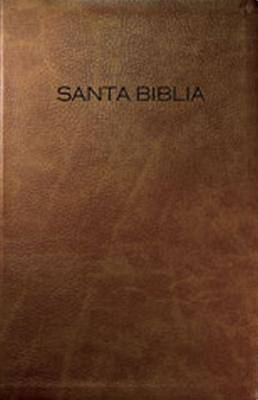 NVI Slimline Gift and Award Bible - Brown