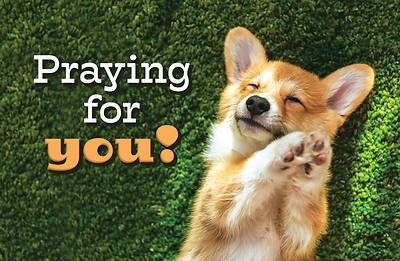 Picture of Praying For You! Dog Postcard