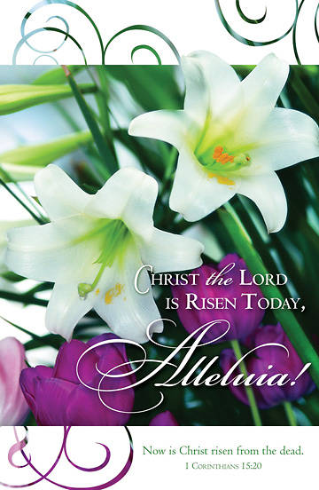 Christ the Lord is Risen Today Bulletin, Regular (Package of 100)