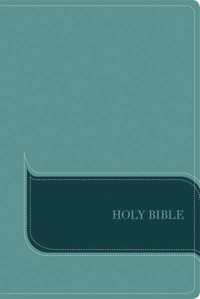 NIV, Understand the Faith Study Bible, Imitation Leather, Blue, Indexed