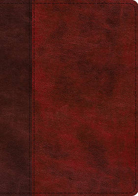 Picture of ESV Study Bible (Trutone, Burgundy/Red, Timeless Design)