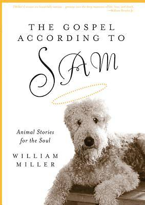 Picture of The Gospel According to Sam - eBook [ePub]