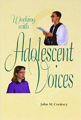 Picture of Working with Adolescent Voices