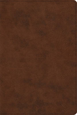 ESV Reader's Bible (Trutone, Brown)