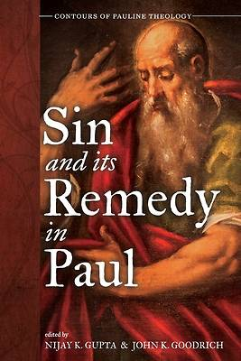 Picture of Sin and Its Remedy in Paul