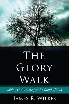 Picture of The Glory Walk