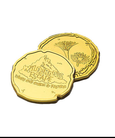 Picture of Group VBS 2014 Wilderness Escape Egyptian Gold 100 Pieces