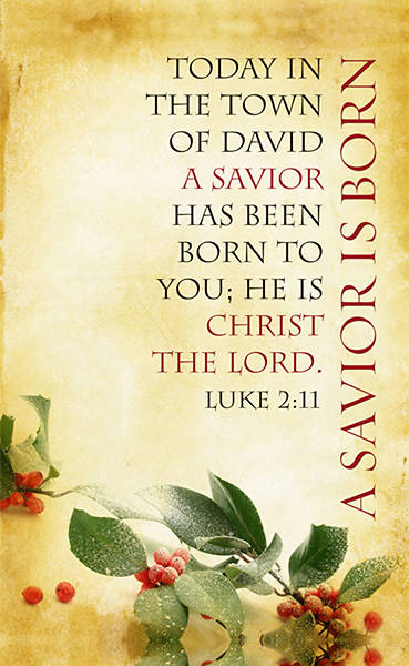 Christmas Parchment Series A Savior is Born Banner 4x6