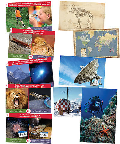 Group VBS 2014 Weird Animals Imagination Station Posters Set of 10