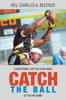 Picture of Catch the Ball