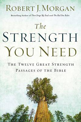 Picture of The Strength You Need